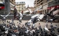 Rom, en Roumanie