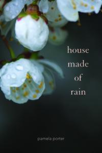 House Made of Rain