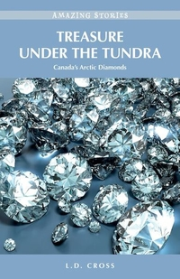 Treasure Under the Tundra