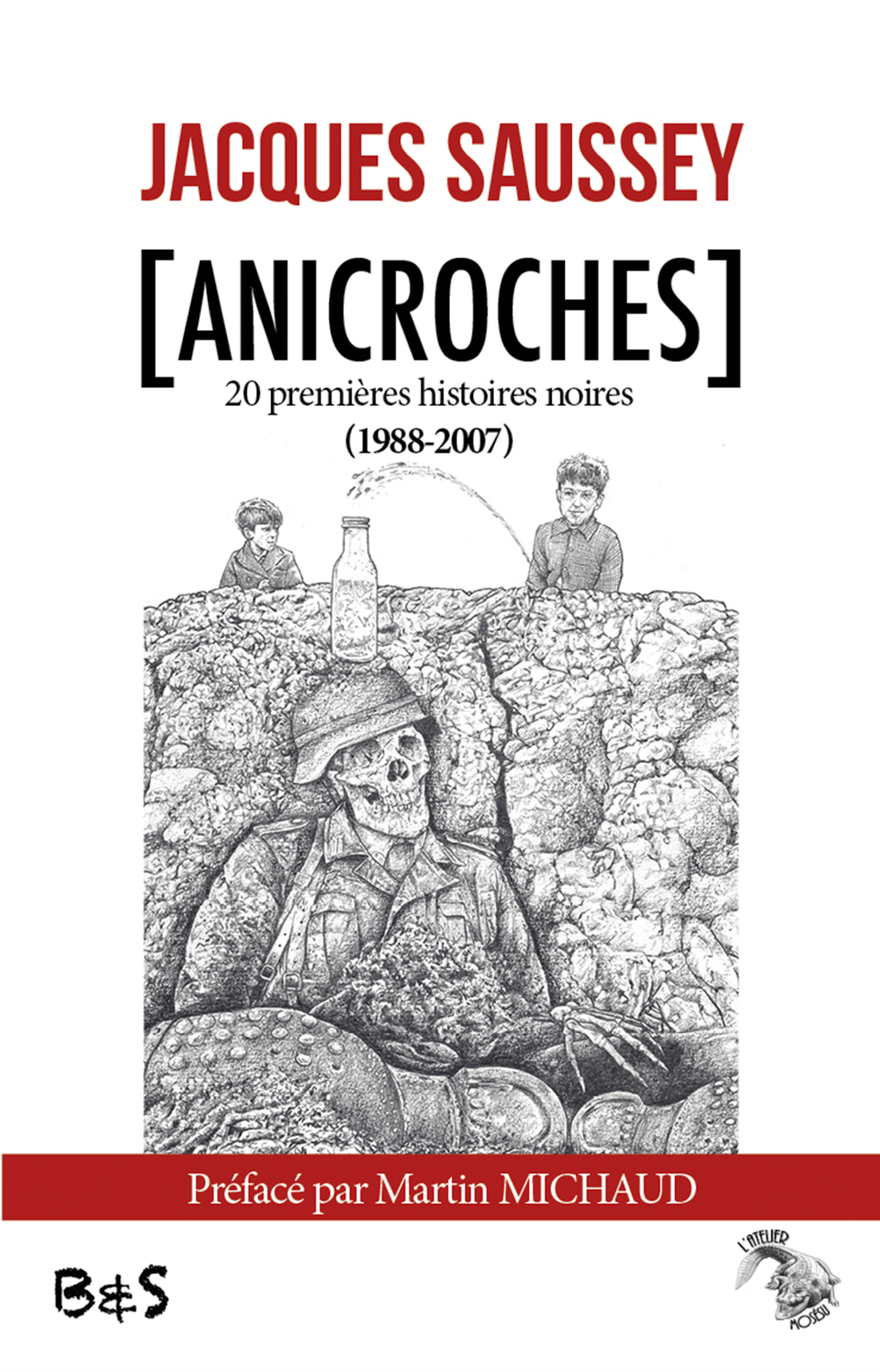 Anicroches