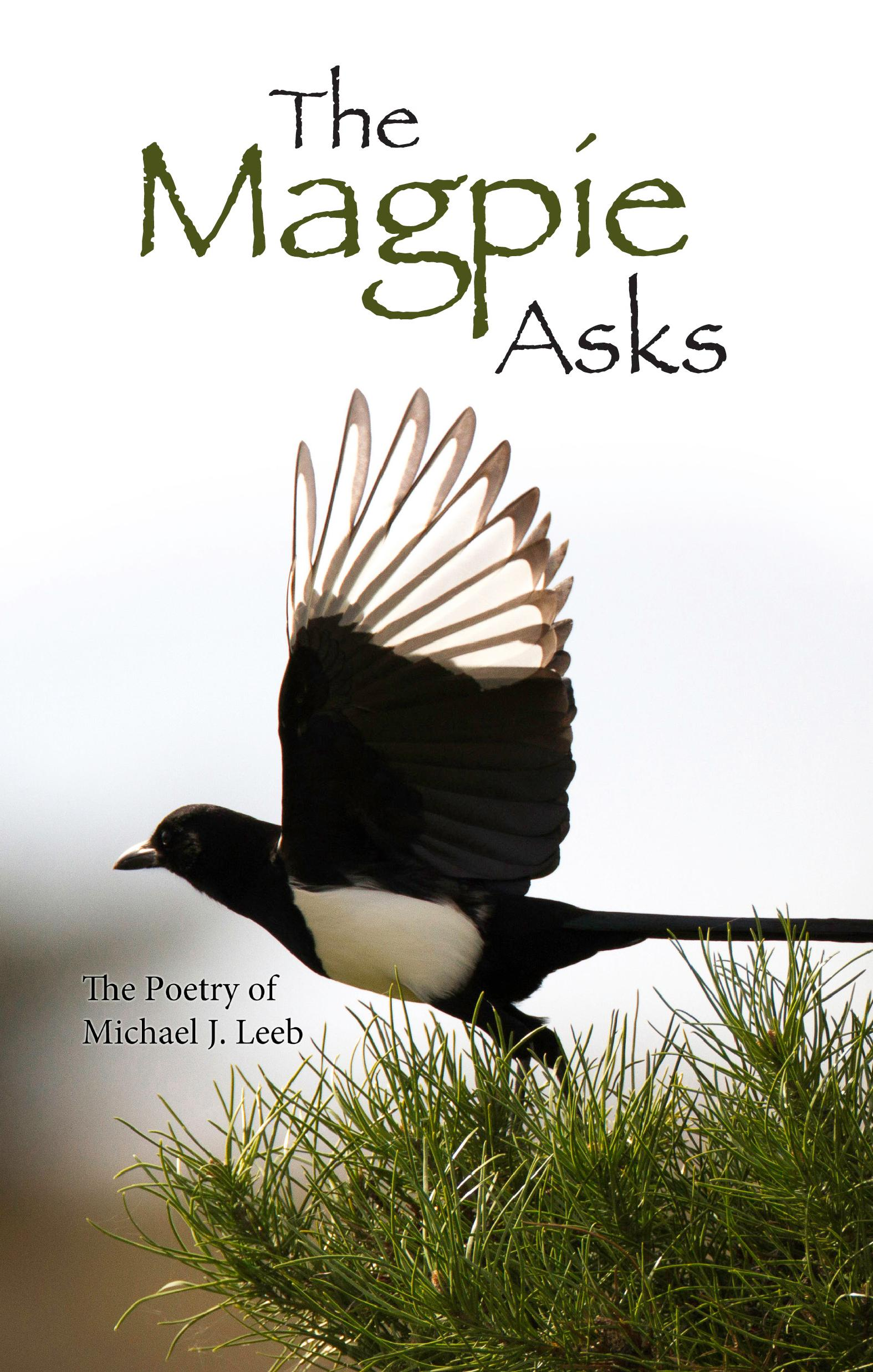 The Magpie Asks