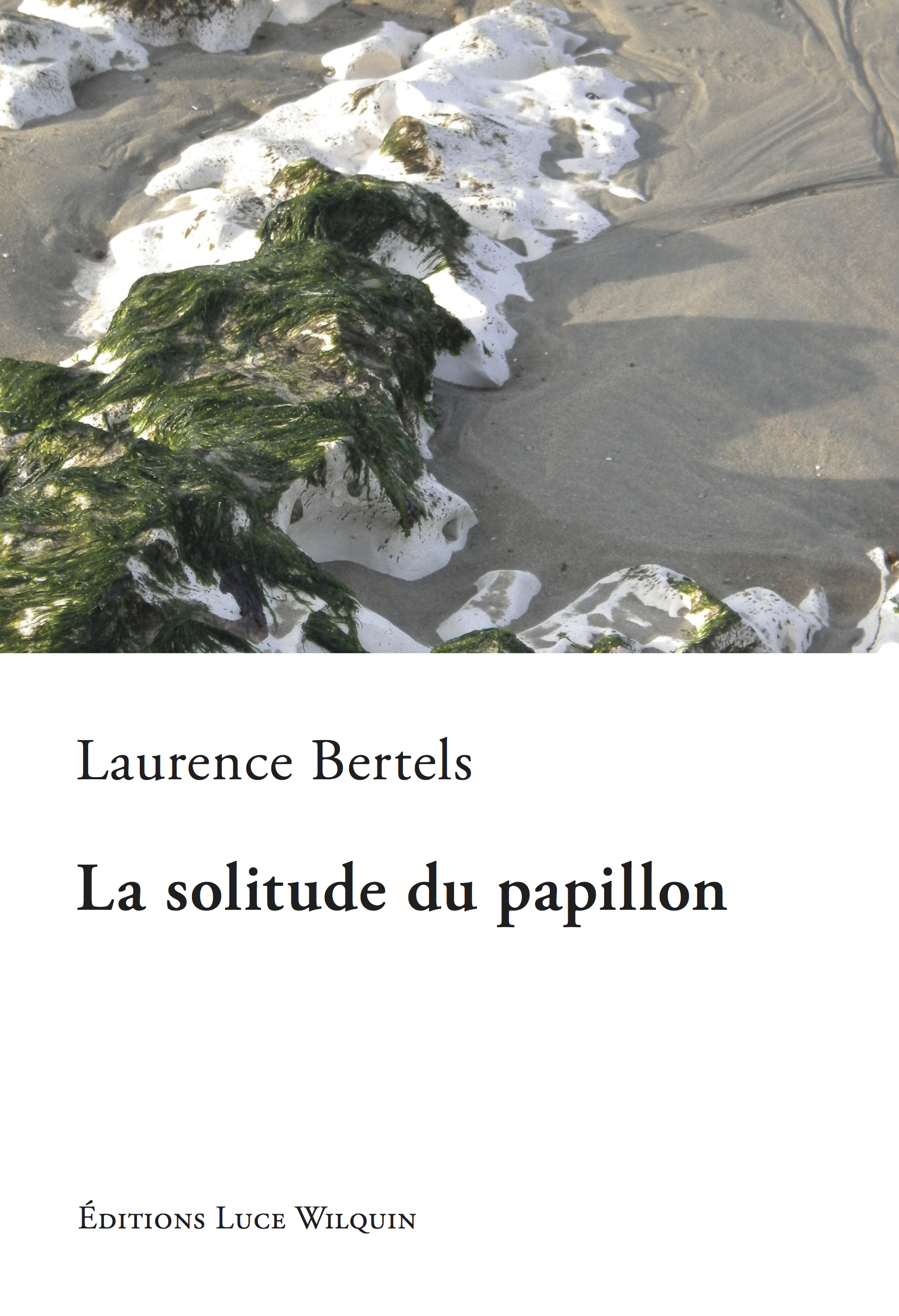 La solitude du papillon