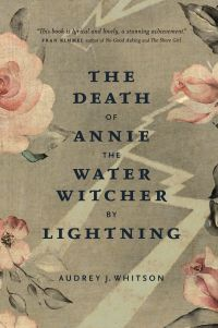Cover image (The Death of Annie the Water Witcher by Lightning)