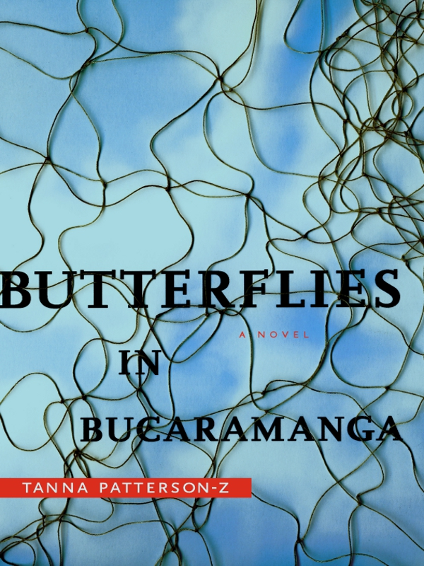 Butterflies in Bucaramanga