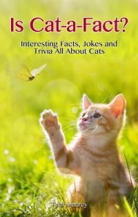Is Cat-a-Fact?