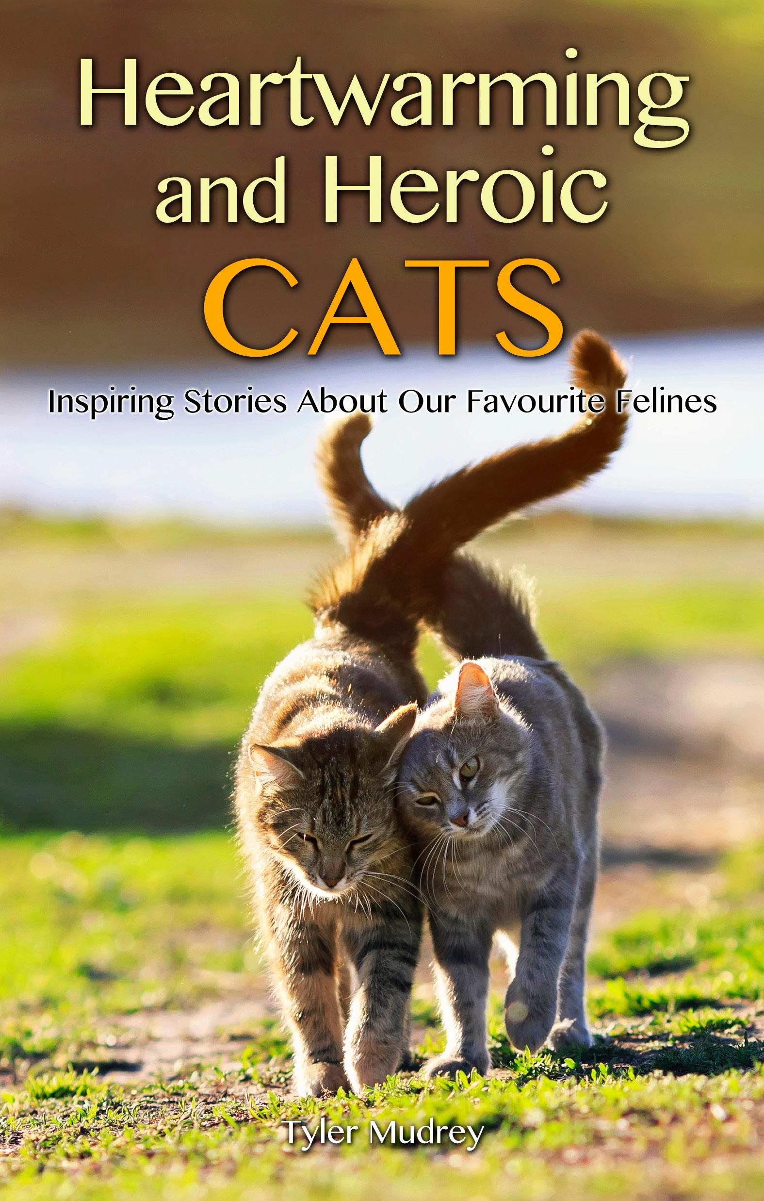 Heartwarming and Heroic Cats