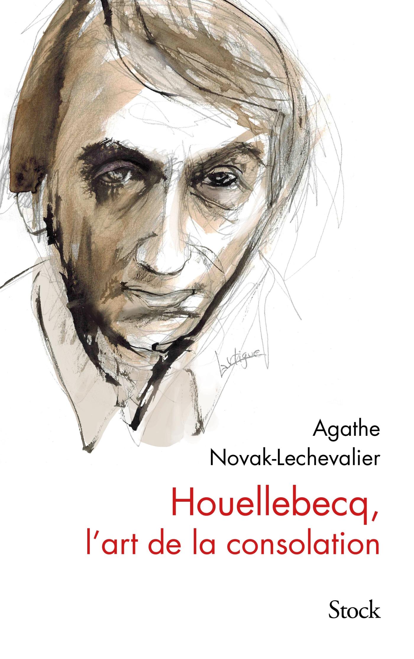 Houellebecq, l'art de la consolation