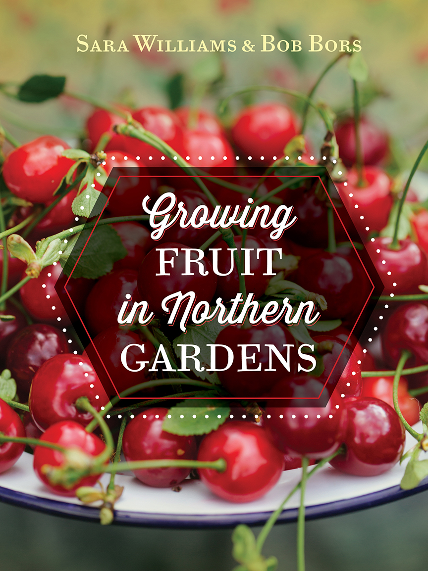 Growing Fruit in Northern Gardens