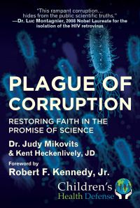 Plague of Corruption