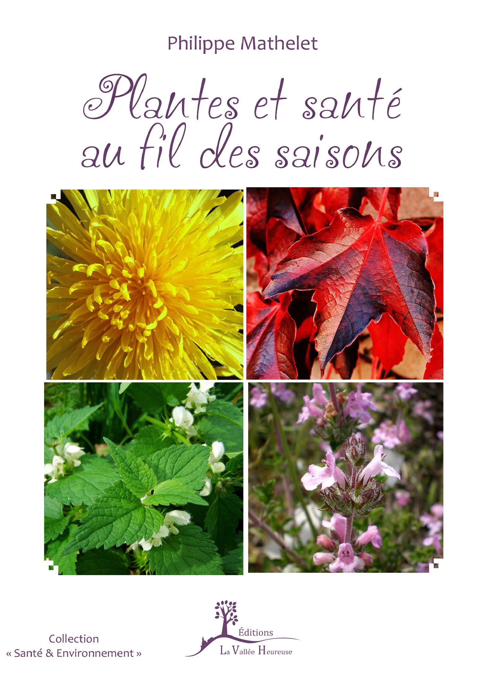 Plantes et santé au fil des saisons