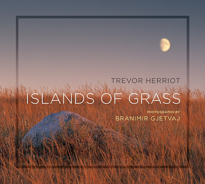 Islands of Grass